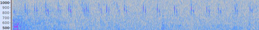 700-1000Hz Spectrogram