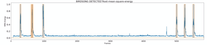 Rmse plot of birdsong recognition algorithm going well